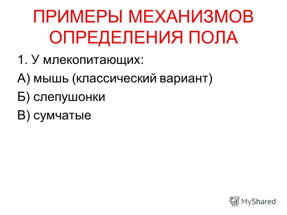 ПРИМЕРЫ МЕХАНИЗМОВ ОПРЕДЕЛЕНИЯ ПОЛА 1. У млекопитающих: А) мышь (классический вариант) Б) слепушонки В) сумчатые