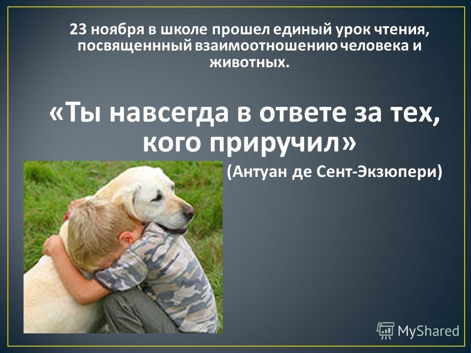 23 ноября в школе прошел единый урок чтения, посвященнный взаимоотношению человека и животных. « Ты навсегда в ответе за тех, кого приручил » ( Антуан де Сент - Экзюпери )