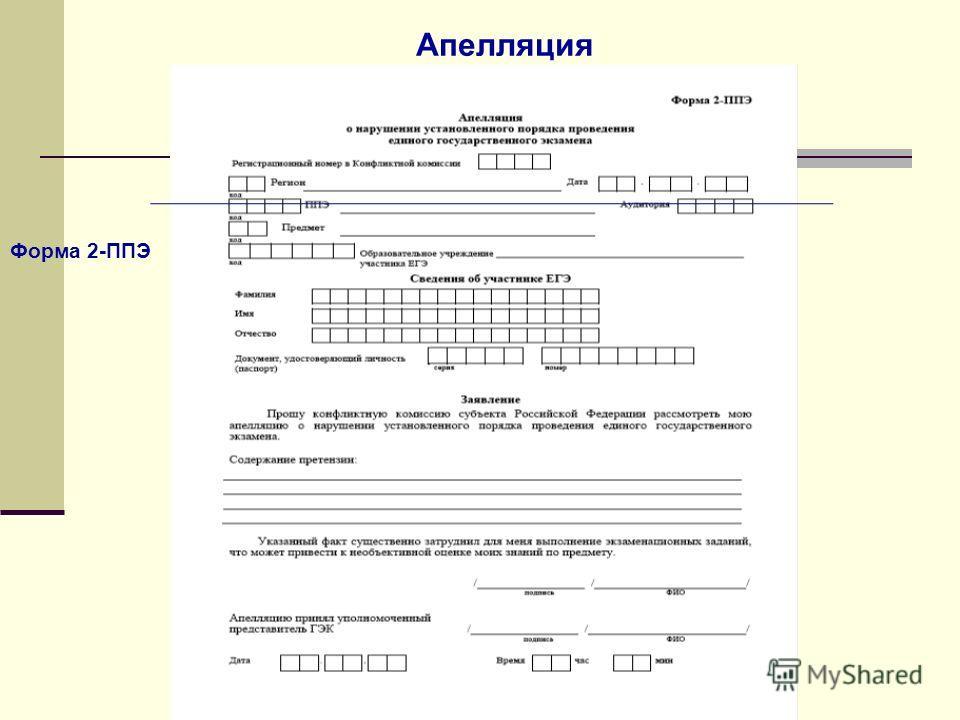 Форма 2-ППЭ Апелляция
