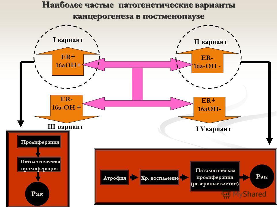 Наиболее частые патогенетические варианты канцерогенеза в постменопаузе ER- 16a-OH - ER- 16a-OH + I вариант III вариант II вариант I Vвариант ER+ 16aOH+ ER+ 16aOH- Атрофия Хр. воспаление Патологическая пролиферация (резервные клетки) Рак Патологическ