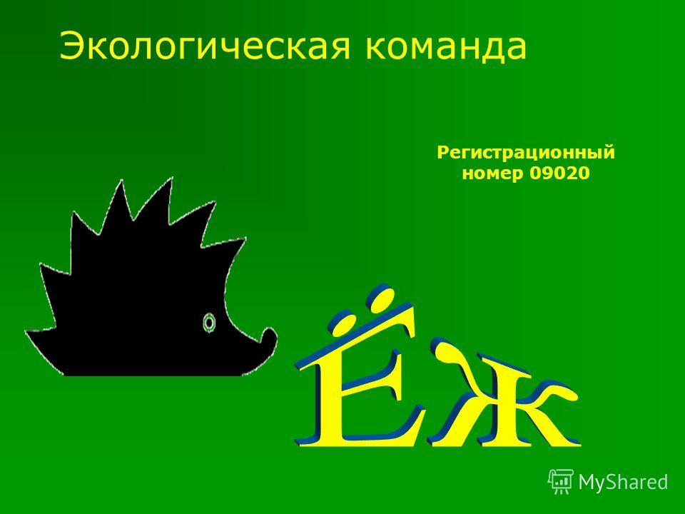 Экологическая команда Регистрационный номер 09020