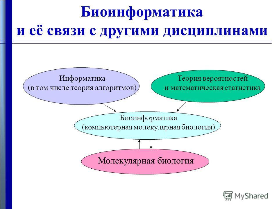 Биоинформатика и её связи с другими дисциплинами Биоинформатика (компьютерная молекулярная биология) Молекулярная биология Информатика (в том числе теория алгоритмов) Теория вероятностей и математическая статистика