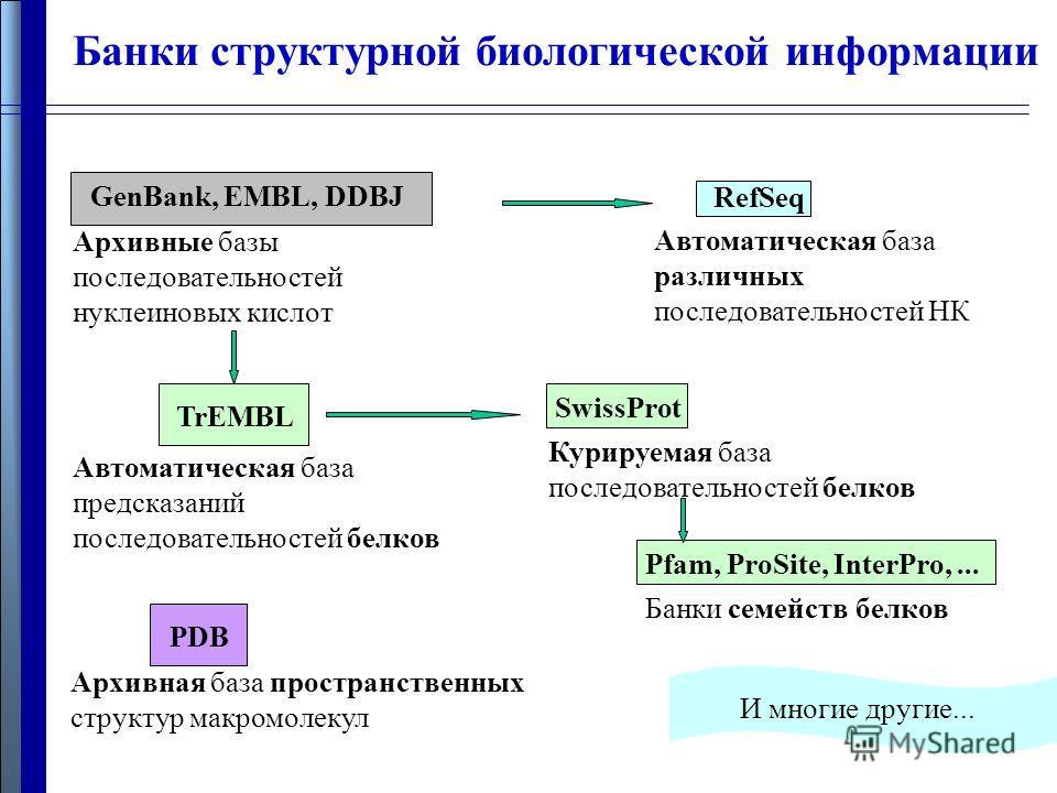 Банки структурной биологической информации Pfam, ProSite, InterPro,... GenBank, EMBL, DDBJ RefSeq Архивные базы последовательностей нуклеиновых кислот Автоматическая база различных последовательностей НК SwissProt Курируемая база последовательностей