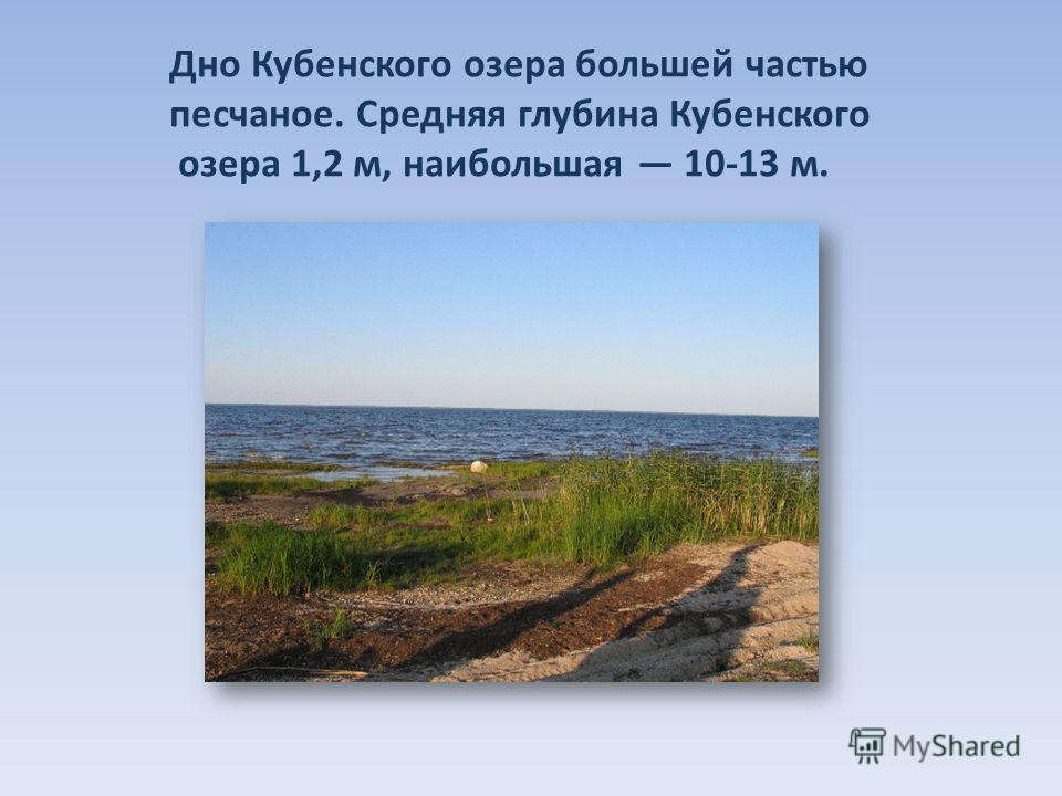 Дно Кубенского озера большей частью песчаное. Средняя глубина Кубенского озера 1,2 м, наибольшая 10-13 м.