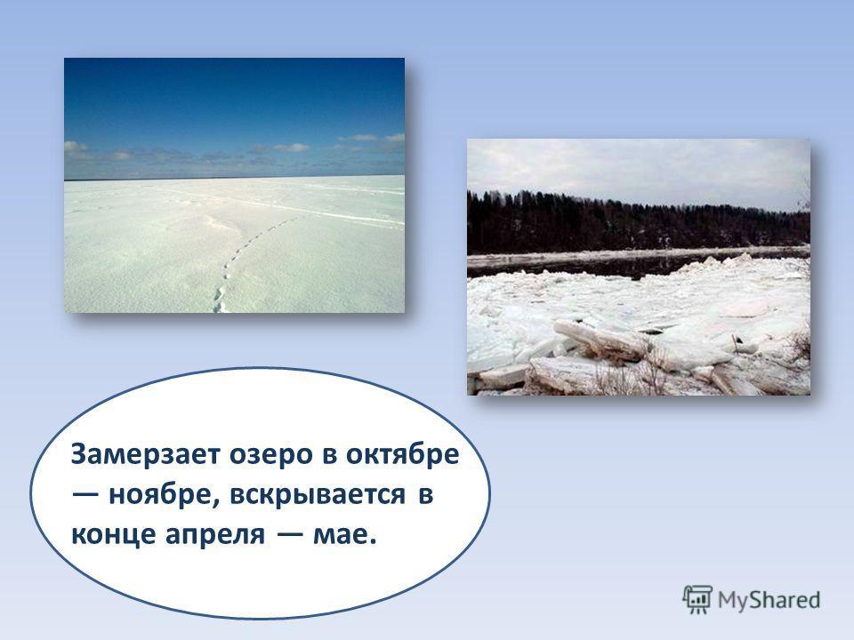 Замерзает озеро в октябре ноябре, вскрывается в конце апреля мае.