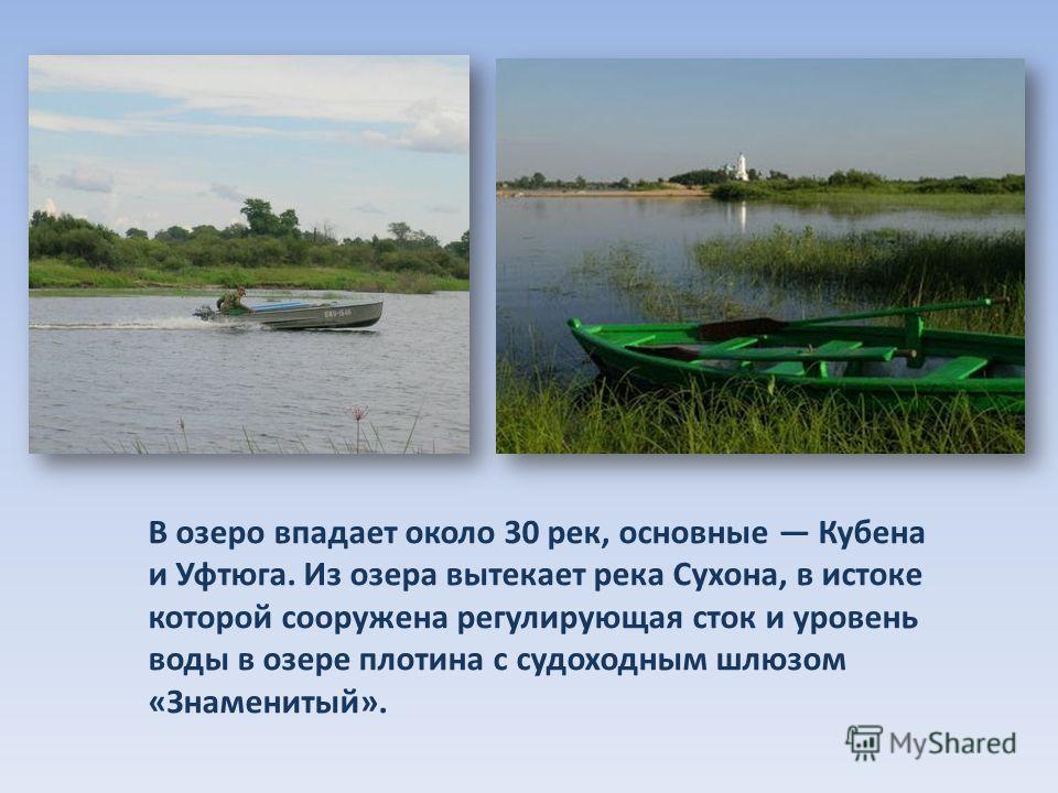 В озеро впадает около 30 рек, основные Кубена и Уфтюга. Из озера вытекает река Сухона, в истоке которой сооружена регулирующая сток и уровень воды в озере плотина с судоходным шлюзом «Знаменитый».