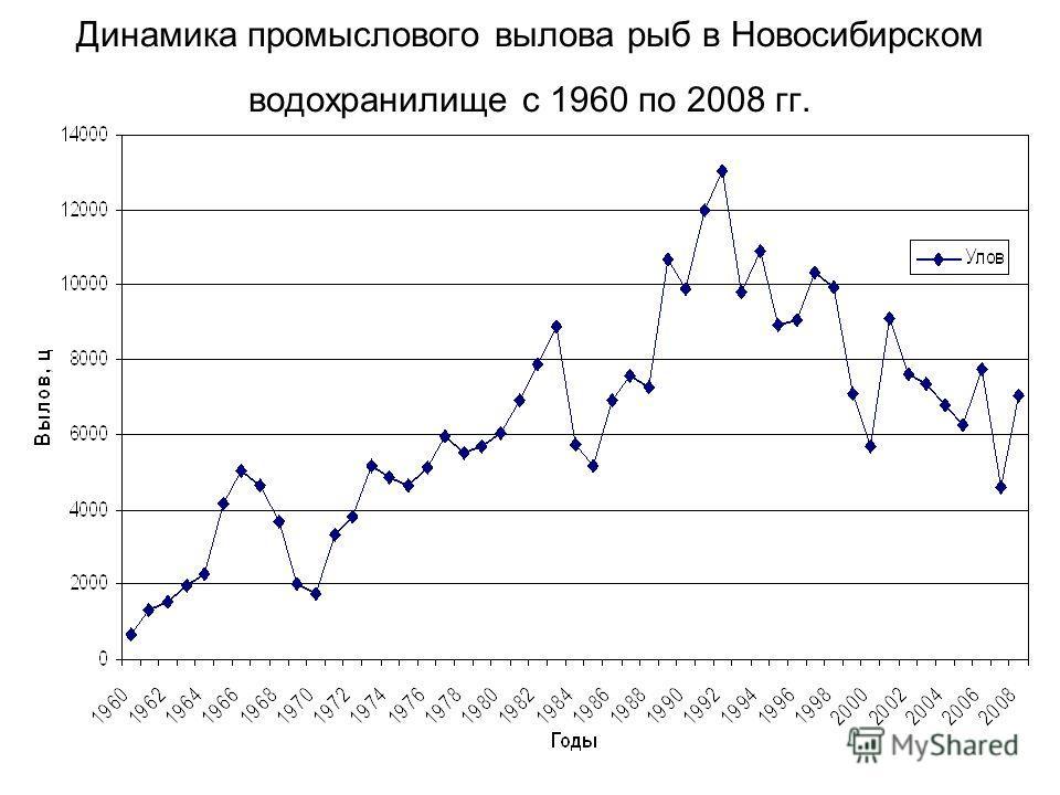 Динамика промыслового вылова рыб в Новосибирском водохранилище с 1960 по 2008 гг.