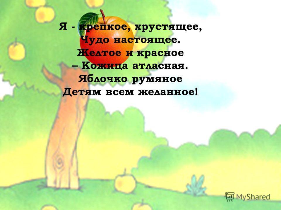 Я - крепкое, хрустящее, Чудо настоящее. Желтое и красное – Кожица атласная. Яблочко румяное Детям всем желанное!