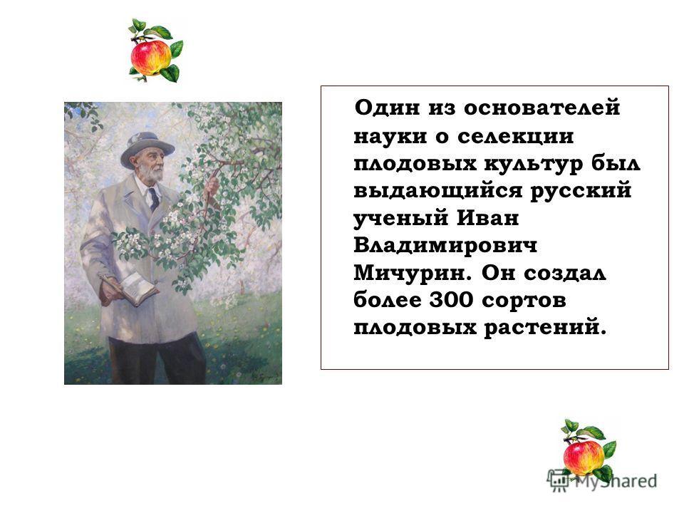 Один из основателей науки о селекции плодовых культур был выдающийся русский ученый Иван Владимирович Мичурин. Он создал более 300 сортов плодовых растений.