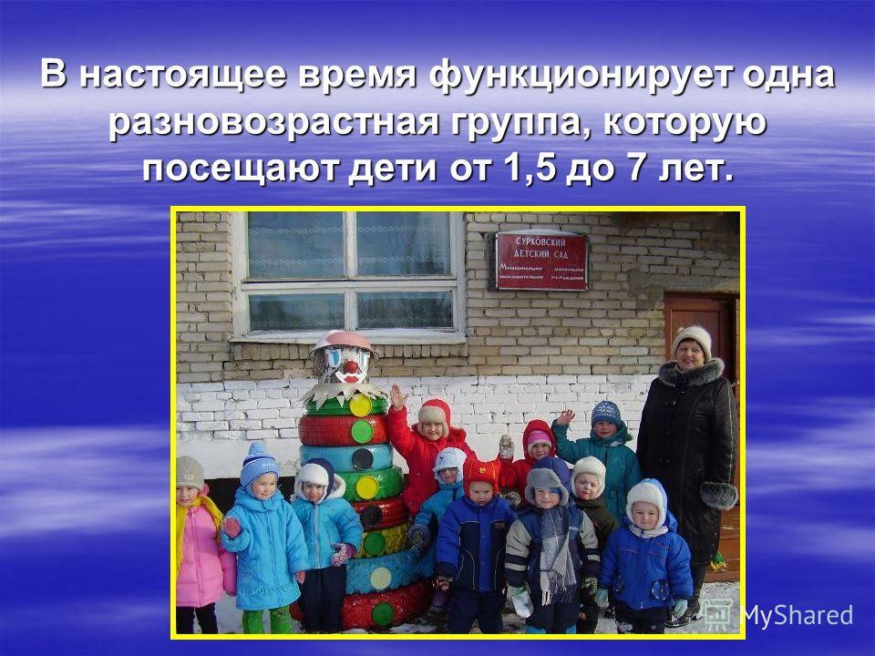В настоящее время функционирует одна разновозрастная группа, которую посещают дети от 1,5 до 7 лет.