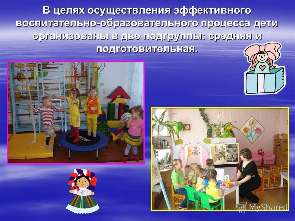 В целях осуществления эффективного воспитательно-образовательного процесса дети организованы в две подгруппы: средняя и подготовительная.