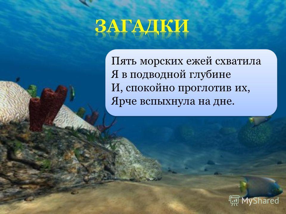 Пять морских ежей схватила Я в подводной глубине И, спокойно проглотив их, Ярче вспыхнула на дне.
