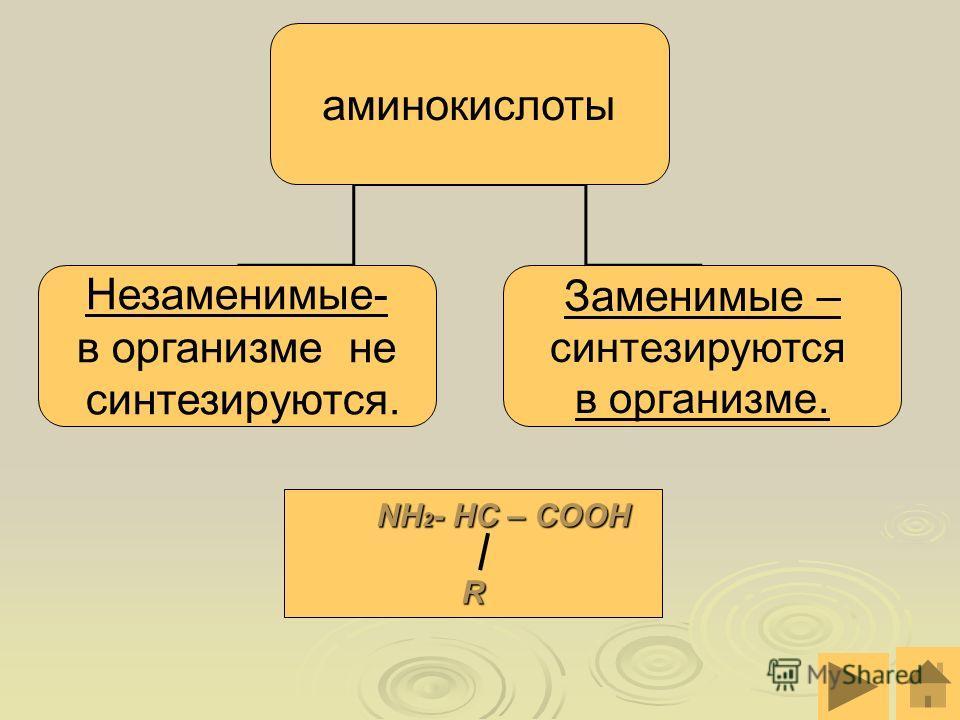 аминокислоты Незаменимые- в организме не синтезируются. Заменимые – синтезируются в организме. NH 2 - HC – COOH NH 2 - HC – COOHR