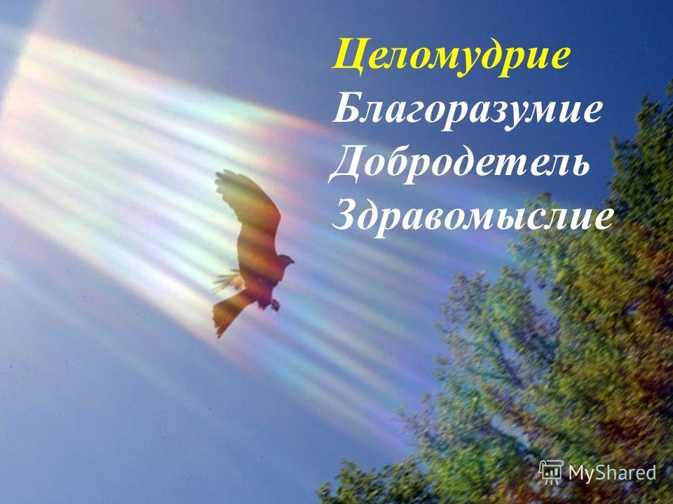 Целомудрие Благоразумие Добродетель Здравомыслие