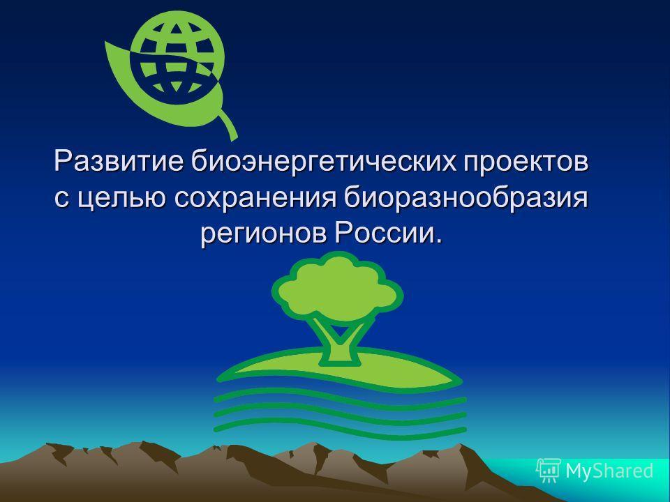 Развитие биоэнергетических проектов с целью сохранения биоразнообразия регионов России.