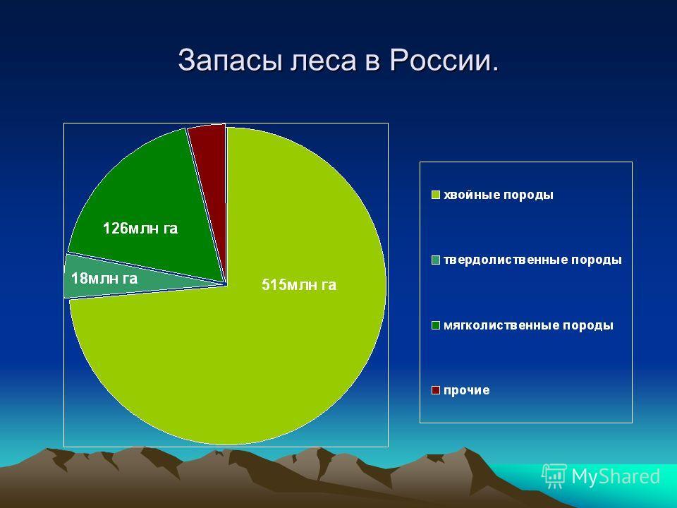 Запасы леса в России.