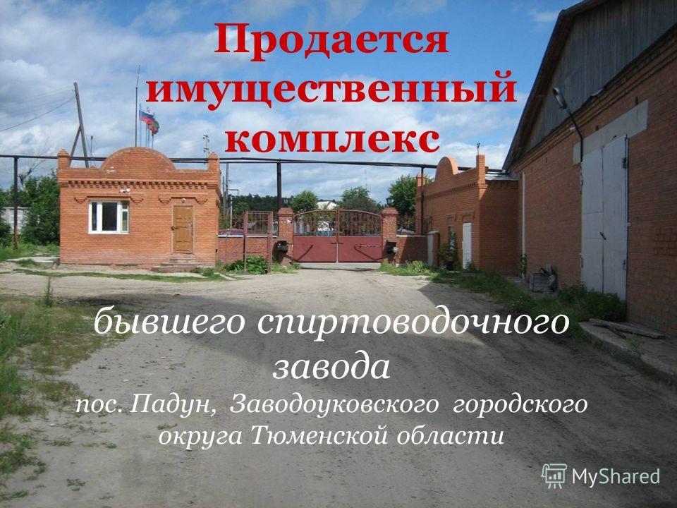 Продается имущественный комплекс бывшего спиртоводочного завода пос. Падун, Заводоуковского городского округа Тюменской области