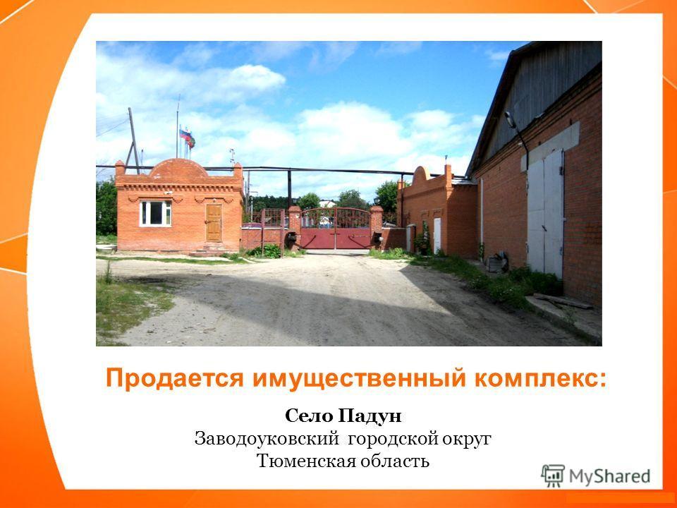 Село Падун Заводоуковский городской округ Тюменская область Продается имущественный комплекс: