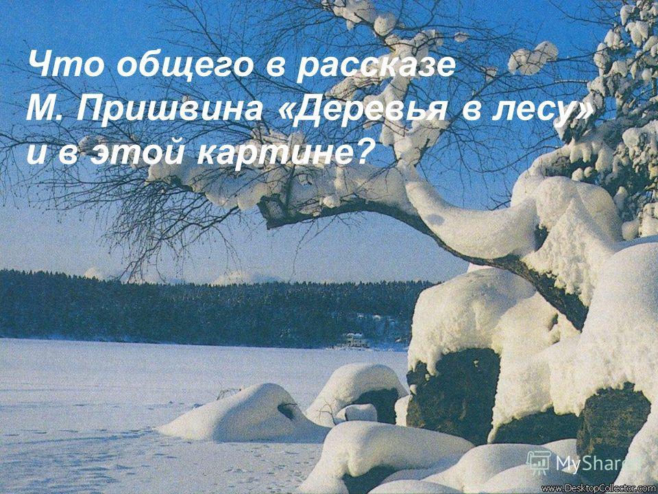 Что общего в рассказе М. Пришвина «Деревья в лесу» и в этой картине?