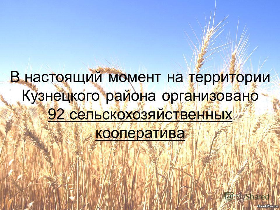 В настоящий момент на территории Кузнецкого района организовано 92 сельскохозяйственных кооператива