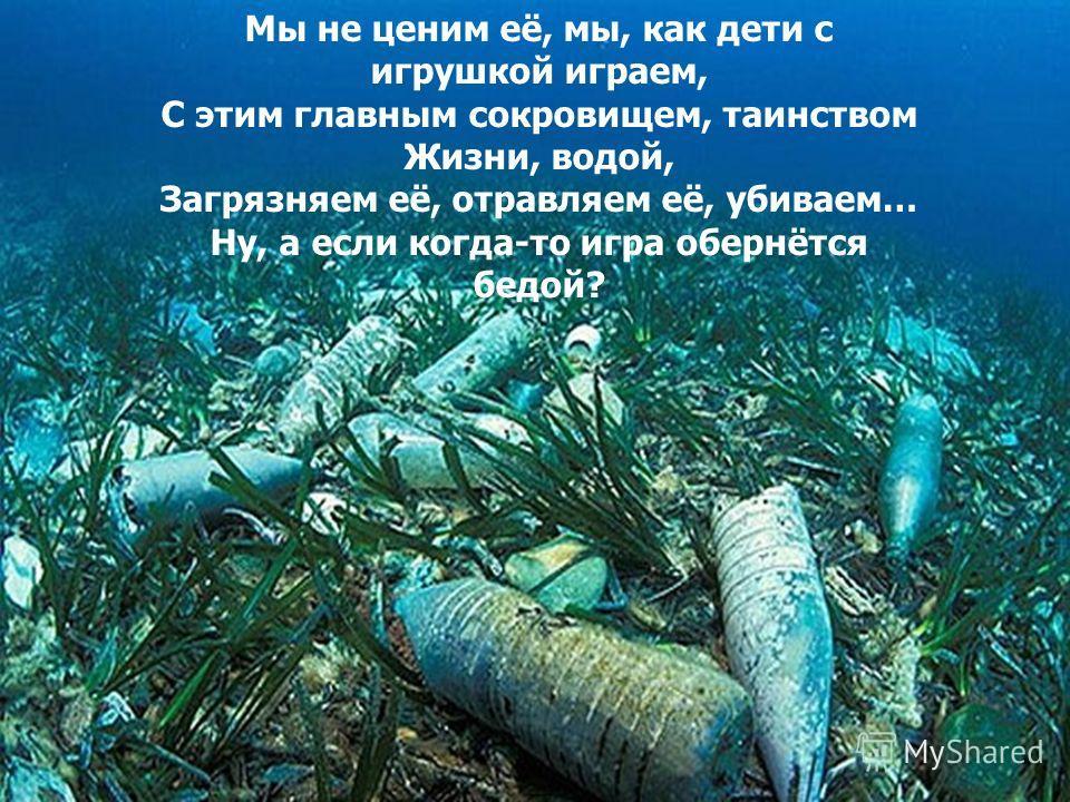 Подводный мир подводный мир жидков