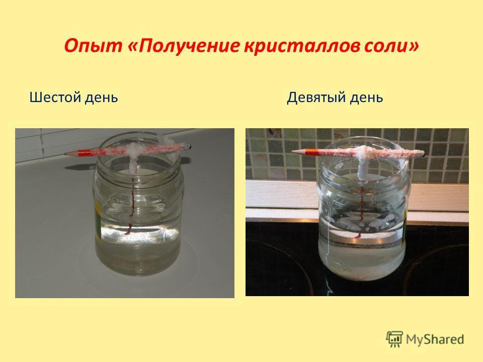 Шестой день Девятый день Опыт «Получение кристаллов соли»