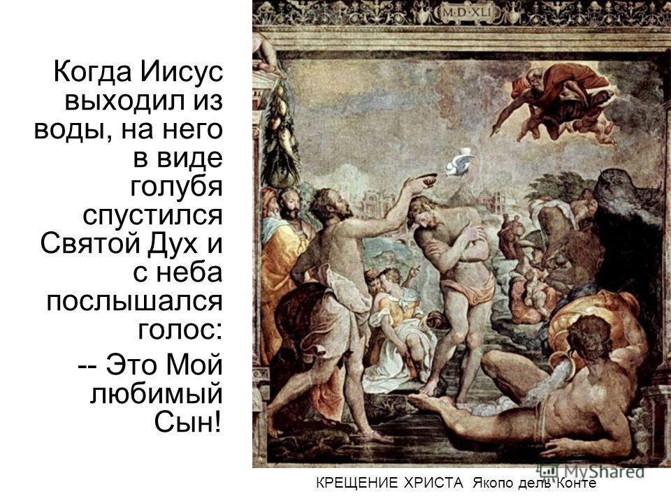 Когда Иисус выходил из воды, на него в виде голубя спустился Святой Дух и с неба послышался голос: -- Это Мой любимый Сын! КРЕЩЕНИЕ ХРИСТА Якопо дель Конте
