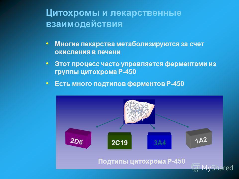Цитохромы и лекарственные взаимодействия Многие лекарства метаболизируются за счет окисления в печени Этот процесс часто управляется ферментами из группы цитохрома P-450 Есть много подтипов ферментов P-450 Подтипы цитохрома P-450 2D6 2C193A4 1A2