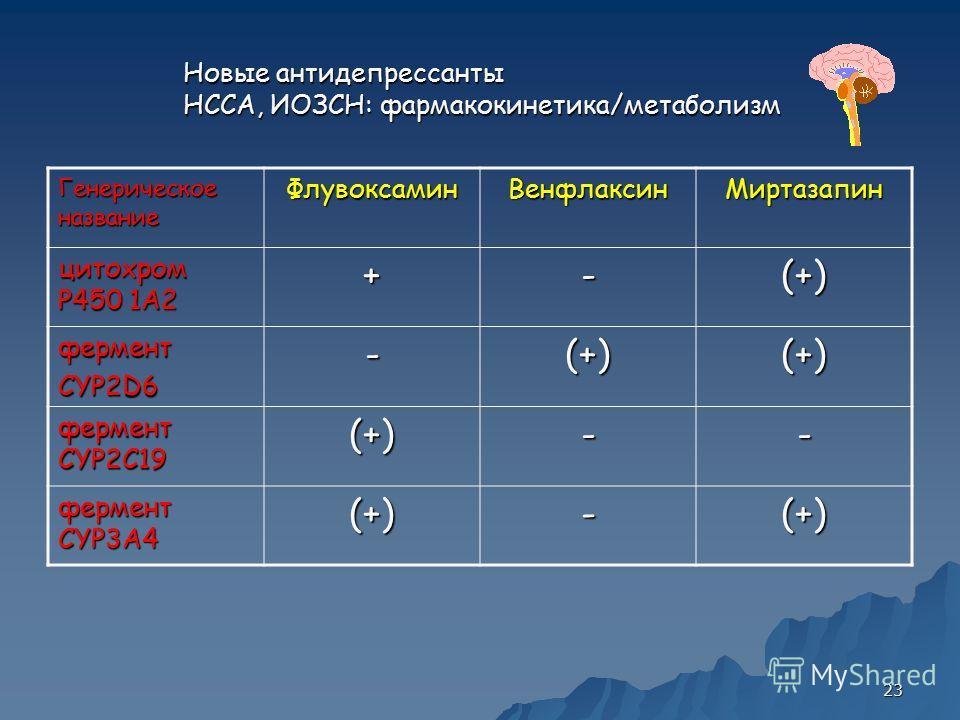 23 Новые антидепрессанты НССА, ИОЗСН: фармакокинетика/метаболизм Генерическое название ФлувоксаминВенфлаксинМиртазапин цитохром P450 1А2 +-(+) ферментCYP2D6-(+)(+) фермент CYP2C19 (+)-- фермент CYP3A4 (+)-(+)
