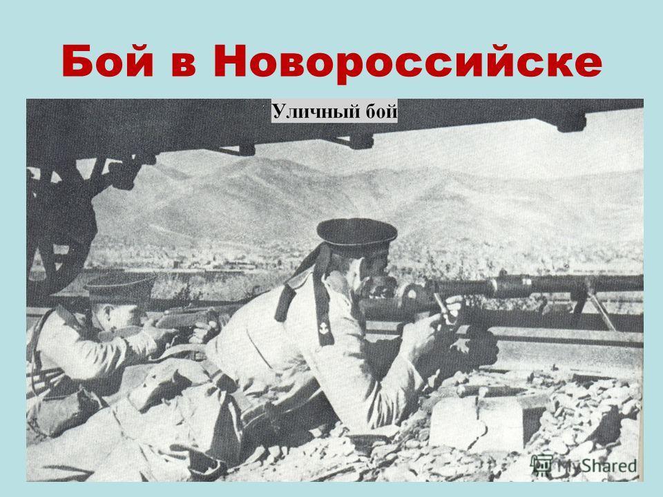 Бой в Новороссийске