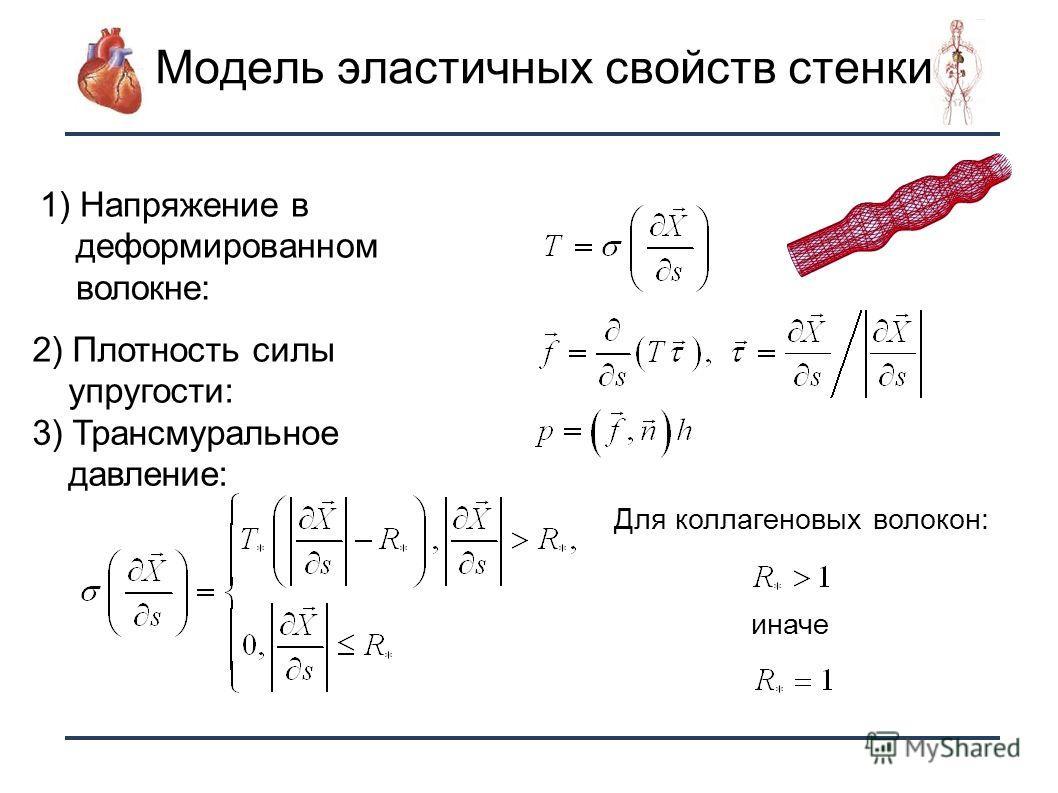10 Модель эластичных свойств стенки 1) Напряжение в деформированном волокне: 2) Плотность силы упругости: 3) Трансмуральное давление: Для коллагеновых волокон: иначе