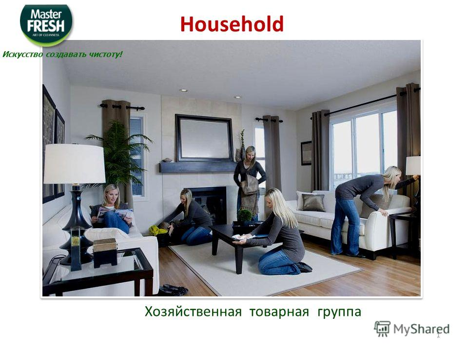 Хозяйственная товарная группа Household Искусство создавать чистоту! 1