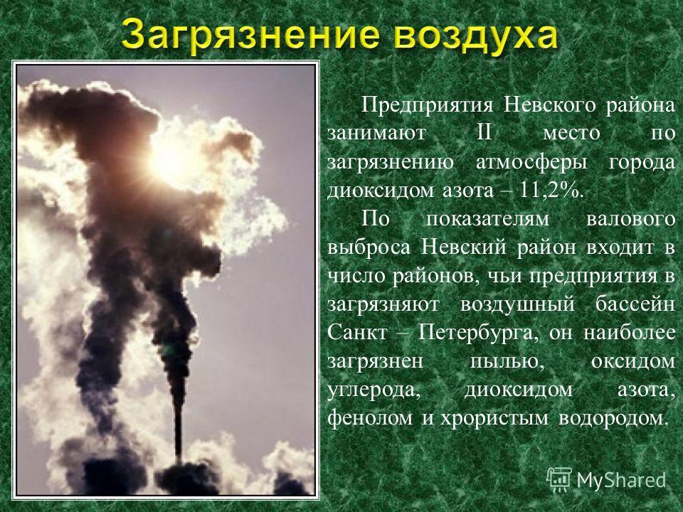 Предприятия Невского района занимают II место по загрязнению атмосферы города диоксидом азота – 11,2%. По показателям валового выброса Невский район входит в число районов, чьи предприятия в загрязняют воздушный бассейн Санкт – Петербурга, он наиболе