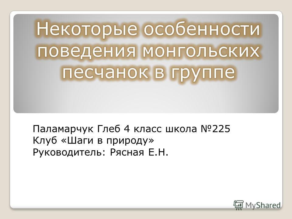Паламарчук Глеб 4 класс школа 225 Клуб «Шаги в природу» Руководитель: Рясная Е.Н.