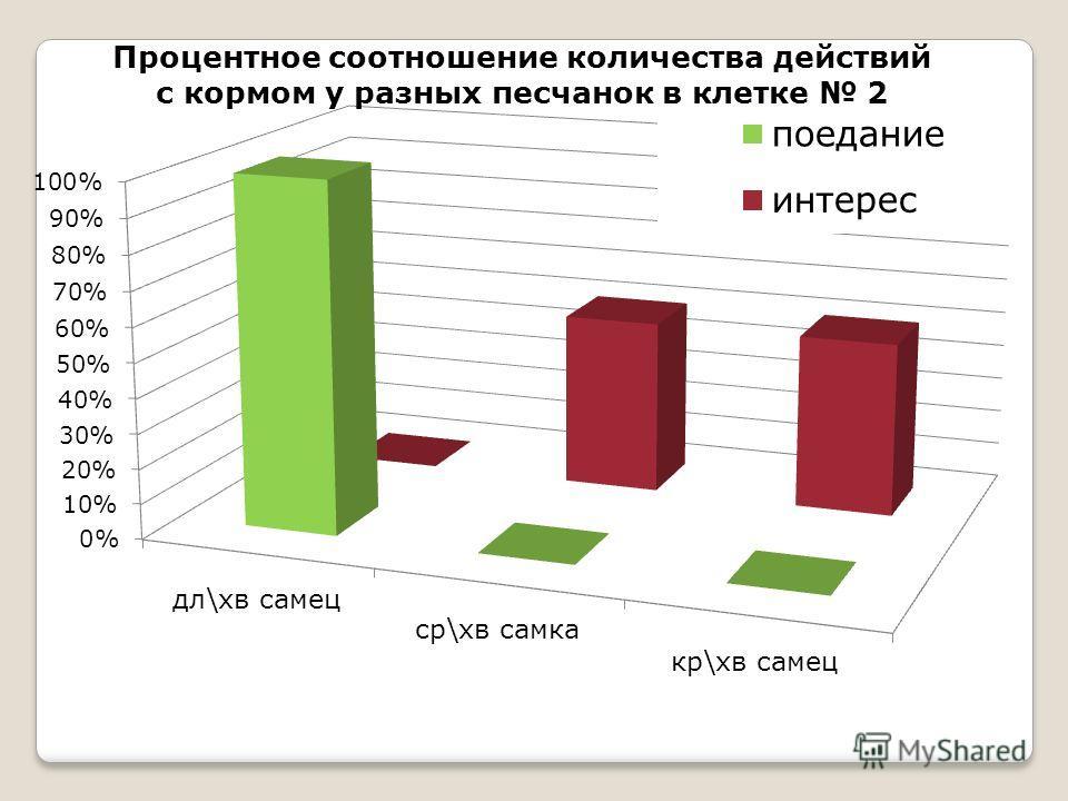 Процентное соотношение количества действий с кормом у разных песчанок в клетке 2