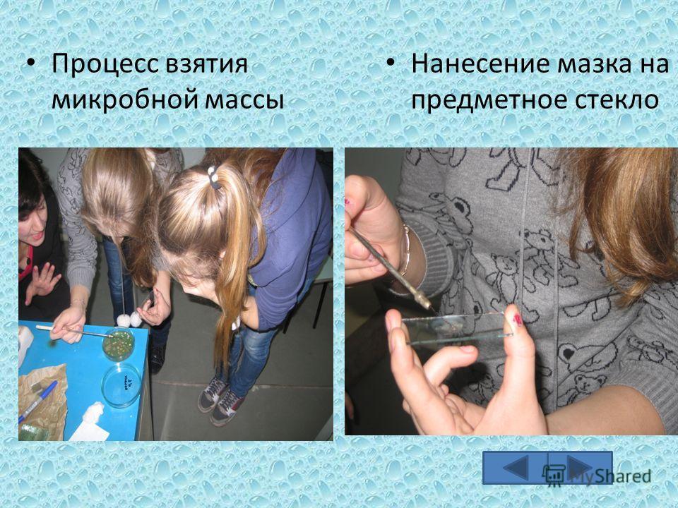 Процесс взятия микробной массы Нанесение мазка на предметное стекло