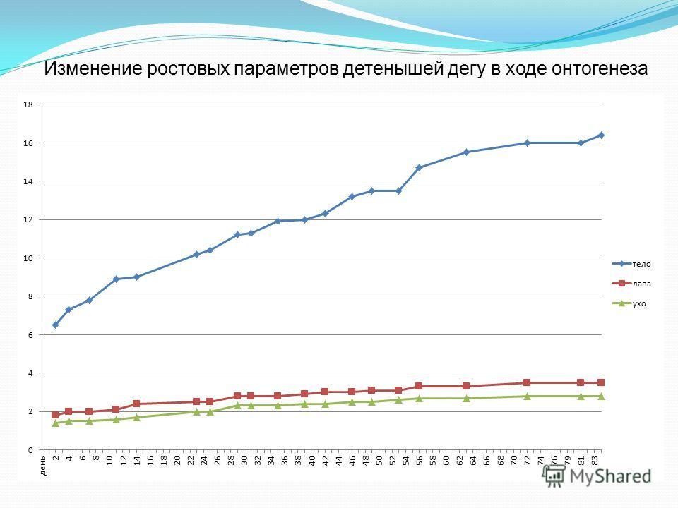 Изменение ростовых параметров детенышей дегу в ходе онтогенеза