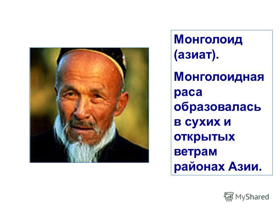 Монголоид (азиат). Монголоидная раса образовалась в сухих и открытых ветрам районах Азии.