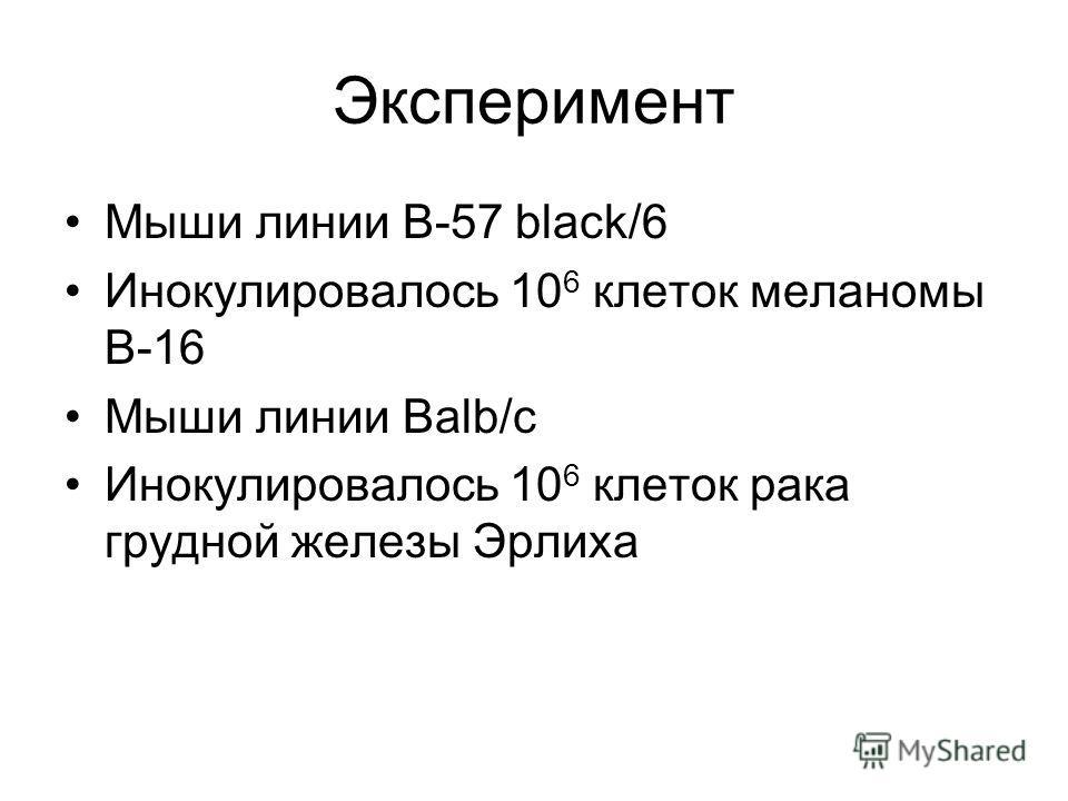 Эксперимент Мыши линии B-57 black/6 Инокулировалось 10 6 клеток меланомы В-16 Мыши линии Balb/c Инокулировалось 10 6 клеток рака грудной железы Эрлиха