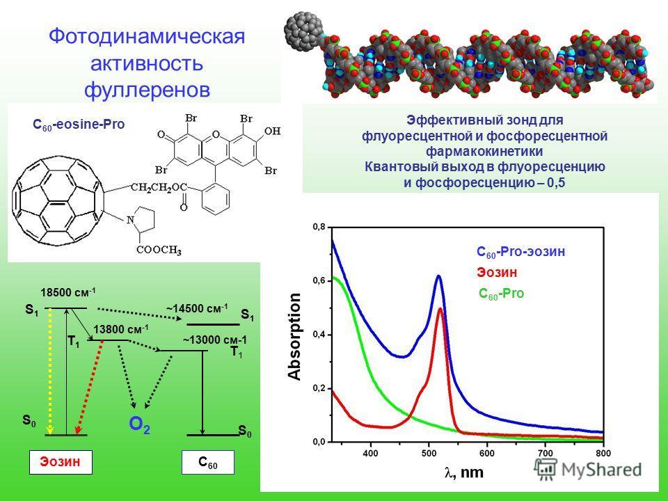 Фотодинамическая активность фуллеренов С 60 -Pro-эозин Эозин С 60 -Pro S0S0 S1S1 T1T1 18500 см -1 13800 см -1 ~13000 см-1 ~14500 см -1 T1T1 S1S1 S0S0 O2O2 Эффективный зонд для флуоресцентной и фосфоресцентной фармакокинетики Квантовый выход в флуорес