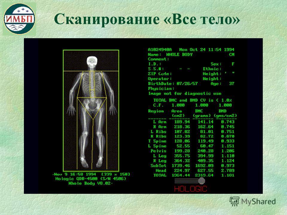 Сканирование «Все тело»