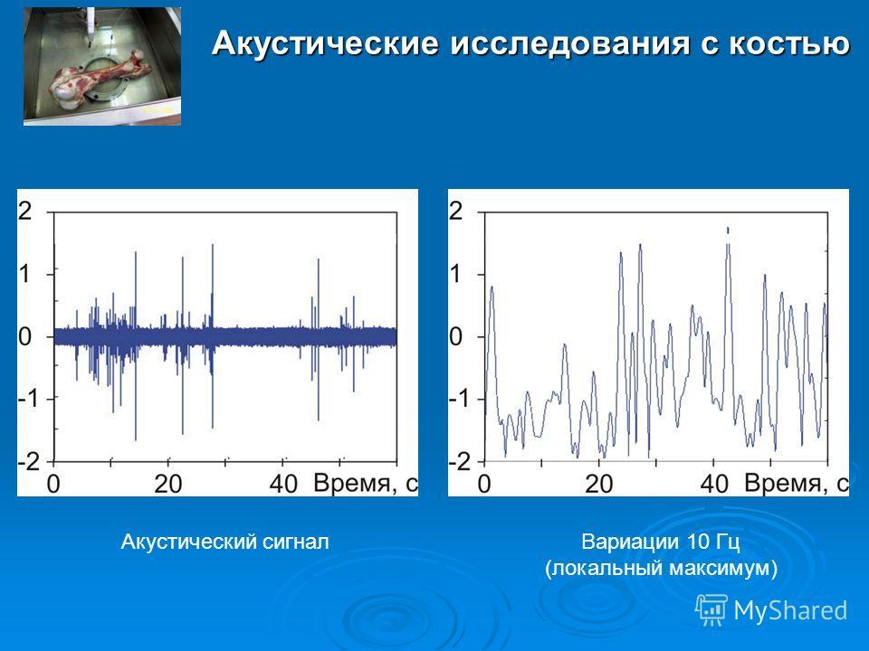 Акустические исследования с костью Вариации 10 Гц (локальный максимум) Акустический сигнал