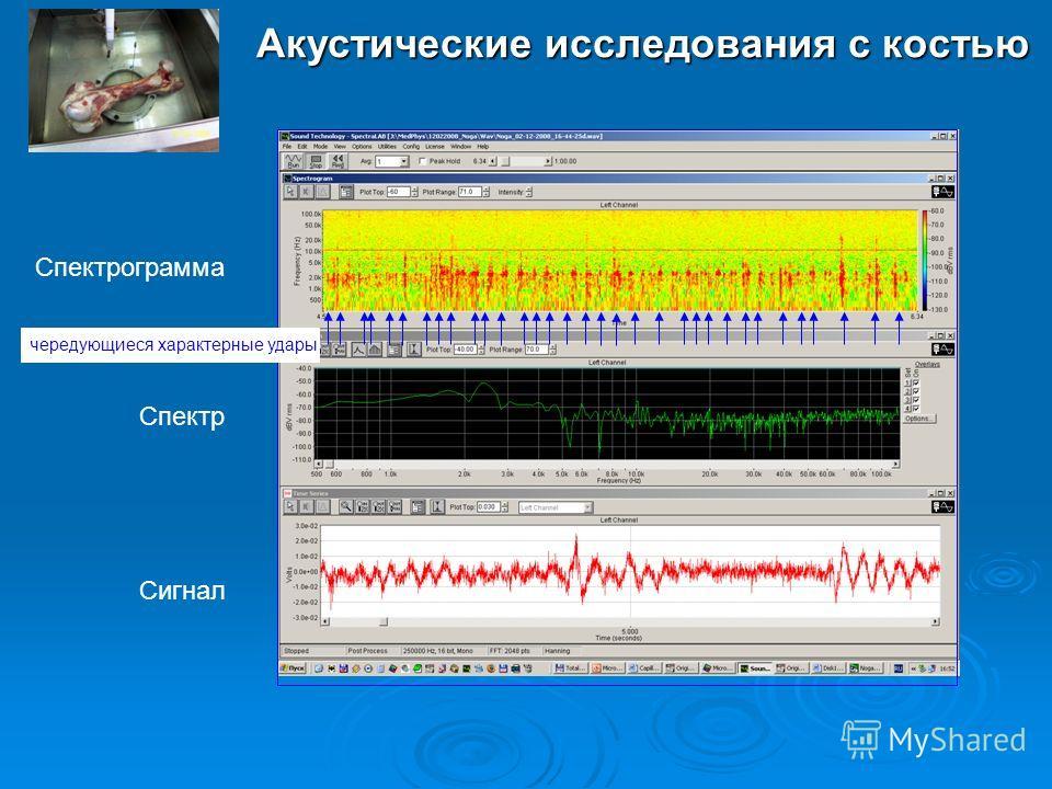 Акустические исследования с костью Спектрограмма Сигнал Спектр чередующиеся характерные удары