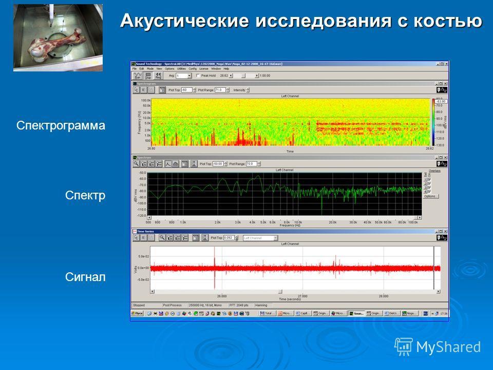 Акустические исследования с костью Спектрограмма Сигнал Спектр