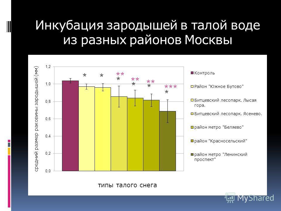 Инкубация зародышей в талой воде из разных районов Москвы