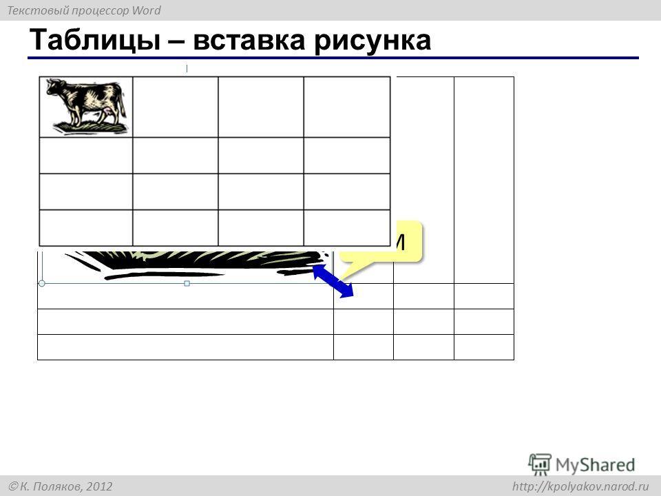 Текстовый процессор Word К. Поляков, 2012 http://kpolyakov.narod.ru Таблицы – вставка рисунка ЛКМ