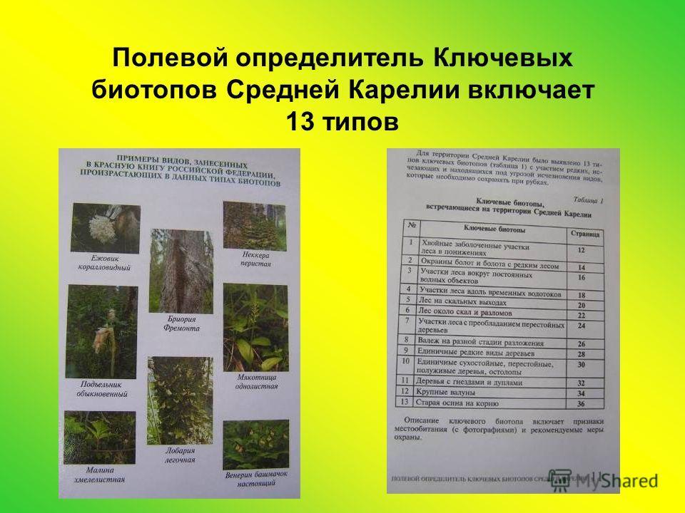 Полевой определитель Ключевых биотопов Средней Карелии включает 13 типов