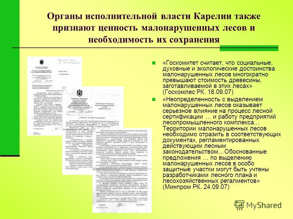 Органы исполнительной власти Карелии также признают ценность малонарушенных лесов и необходимость их сохранения «Госкомитет считает, что социальные, духовные и экологические достоинства малонарушенных лесов многократно превышают стоимость древесины,