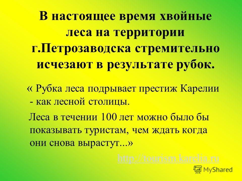 В настоящее время хвойные леса на территории г.Петрозаводска стремительно исчезают в результате рубок. « Рубка леса подрывает престиж Карелии - как лесной столицы. Леса в течении 100 лет можно было бы показывать туристам, чем ждать когда они снова вы