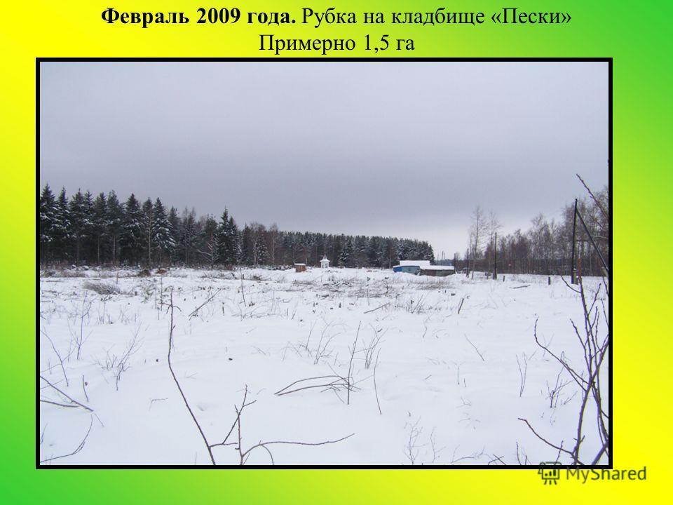 Февраль 2009 года. Рубка на кладбище «Пески» Примерно 1,5 га